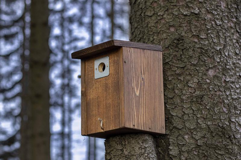 Ptačí budka pro sýkorky s ochranou vletu